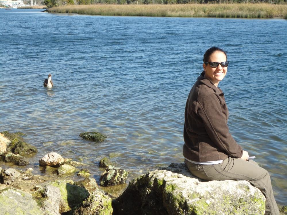 pelican, wakulla river